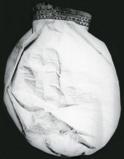 Мешок из мочевого пузыря животного
